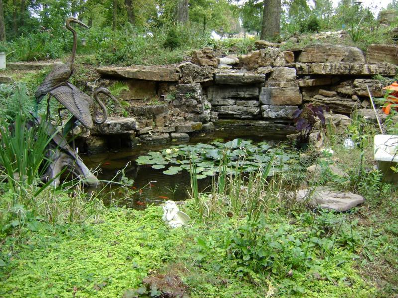 ... Retaining Walls Paver Patios Flagstone Patios Seeding Sod Installation  Water Features Koi Pond Pondless Waterfalls Downspout Mulch Snow Removal  Salting ...