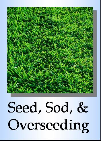 Grass seed, seeding, sod installation, lawn overseeding, straw blowing, grading